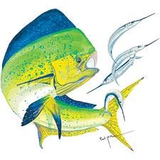 Dolphinfish drawing - photo#23
