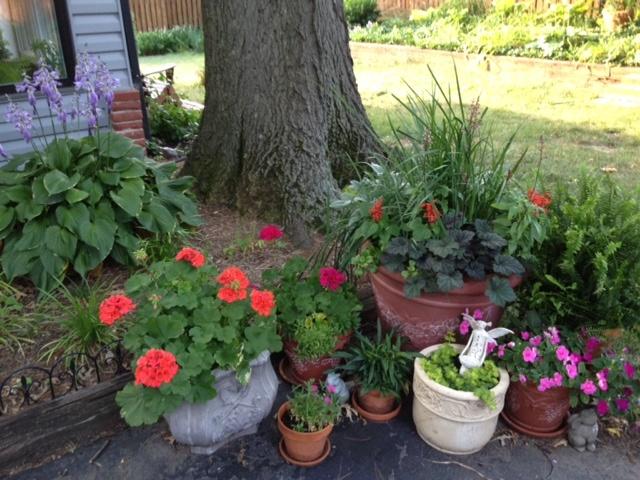 Container gardening garden ideas pinterest for Garden designs pinterest