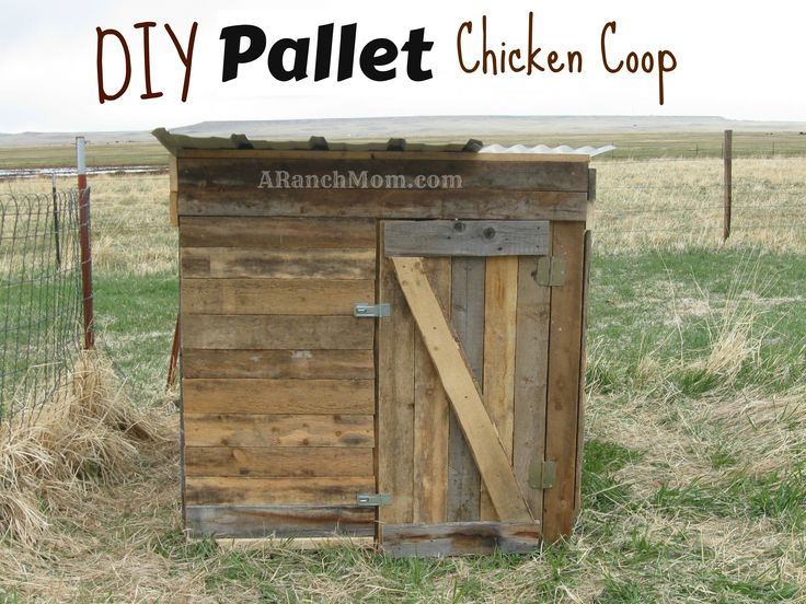 Diy pallet chicken coop chicken coop addiction pinterest for Pallet chicken coup