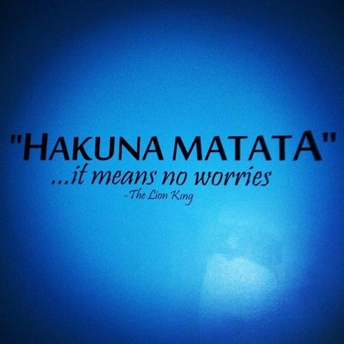 Hakuna matata sayings and quotes pinterest