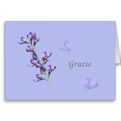 Thank you grazie italian purple sweet peas cards thank you