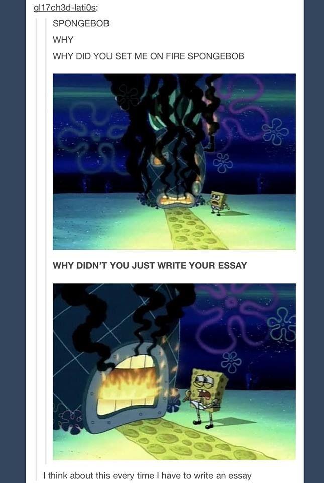 spongebob squarepants writes an essay