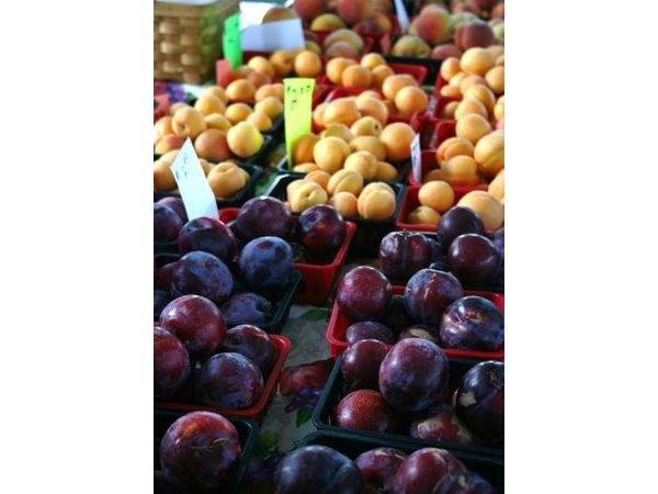 Pasco Farmers Market  Local farmer support