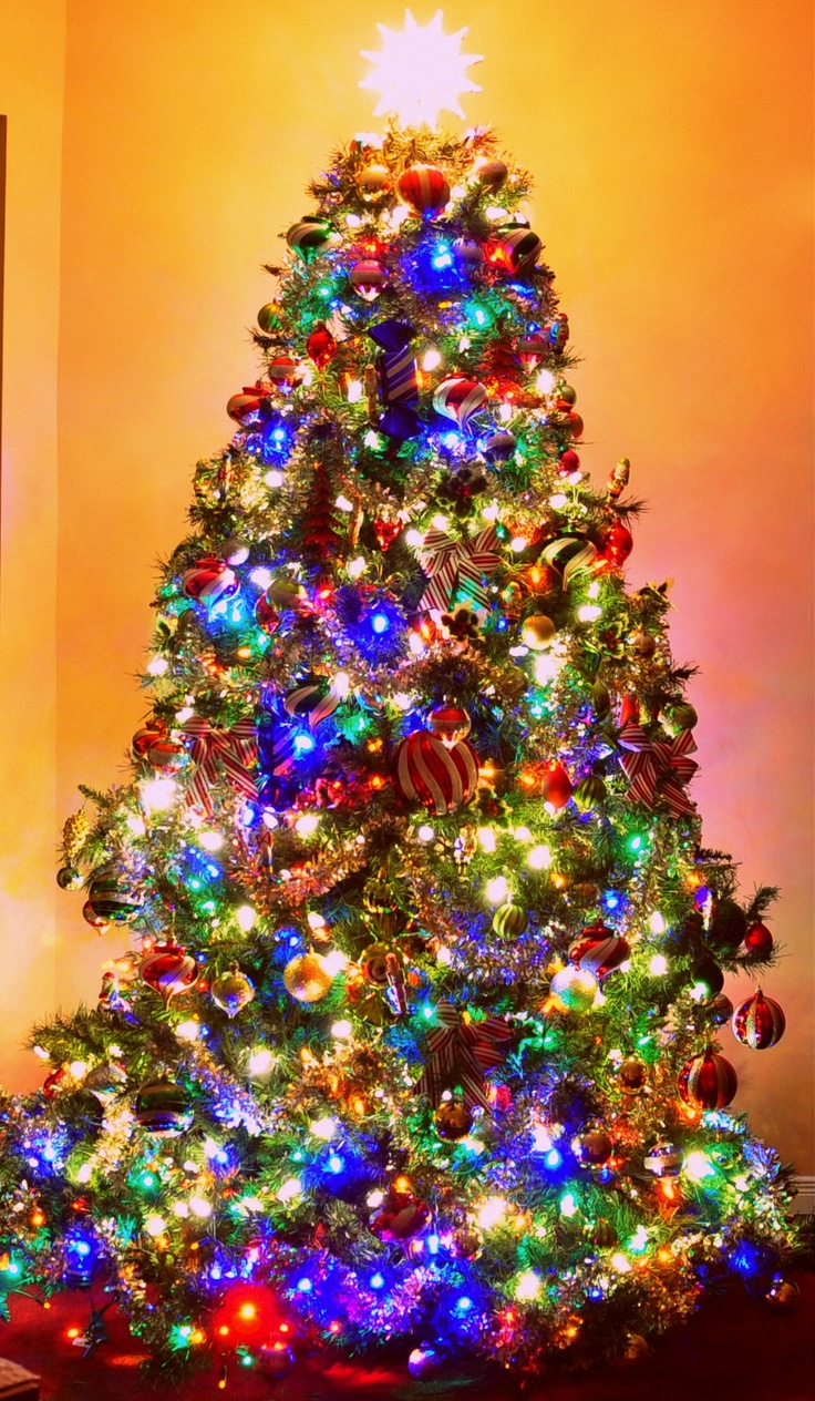 My Tree Colored Lights Christmas Pinterest Tree With Colored Lights