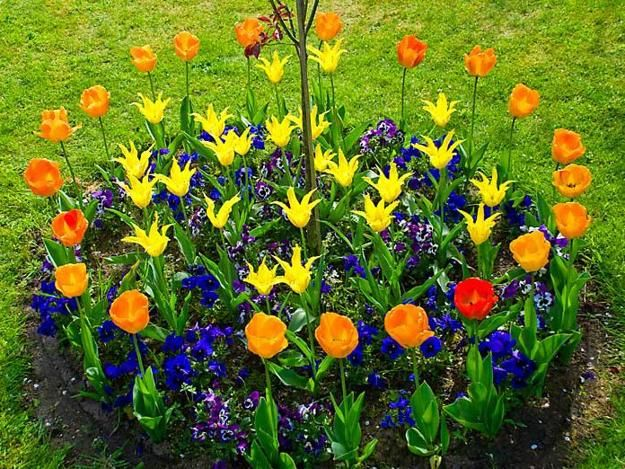 Backyard Flower Bed Ideas :  Flower Beds Adding Bright Centerpieces to Yard Landscaping and Garden