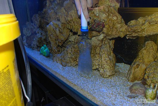 Fish tank keeping clean clean an aquarium everything you for How do you clean a fish tank