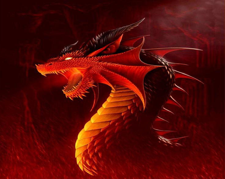 orange glow dragons wallpaper - photo #7
