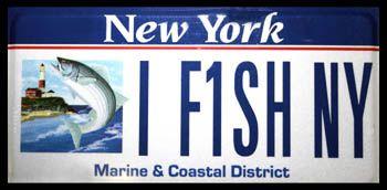 I fish ny marine and coastal plate fishy license plates for Saltwater fishing license ny