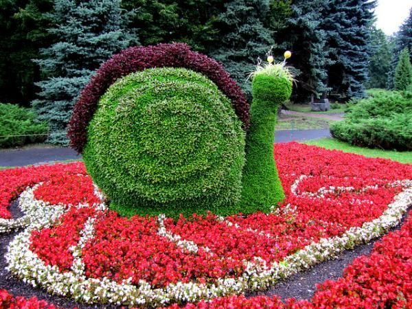 Улитка из цветов
