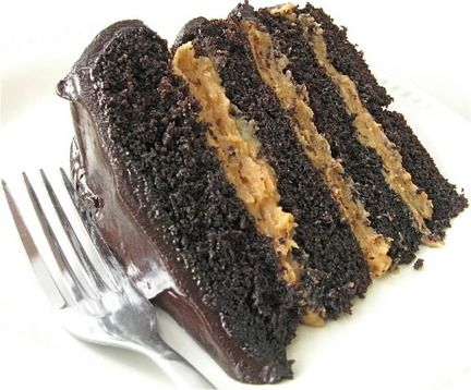Buckeye Peanut Butter Fudge Cake | Let them eat Cakes..... | Pintere ...