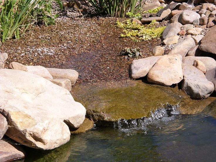Bog filter koi pond pinterest for Bog filter design