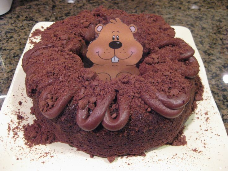 Groundhog cake! Christina Shrimplin - - for Danny!!! :)