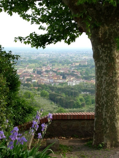 Buggiano Italy  City pictures : Buggiano, Tuscany, Italy | Italy | Pinterest
