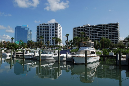 www.SeeSarasotaLive.com | Sarasota, FL, on the Gulf Coast of Florida