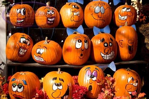 cute pumpkin faces on small pumpkins. Black Bedroom Furniture Sets. Home Design Ideas