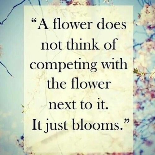 cute quote d flower quote famous quotes