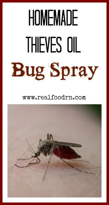 Homemade thieves bug spray - How to keep thieves away from your home ...