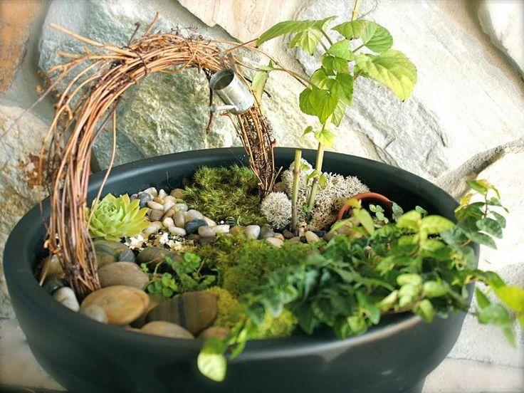 Indoor Fairy Garden Ideas : Indoor Fairy Garden Ideas