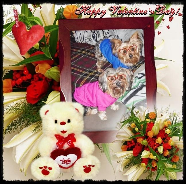 valentine card greetings husband