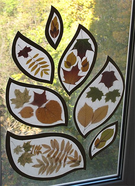 Another way to enjoy fall color from the inside.  Ironed between wax paper?  Organic shape outline?