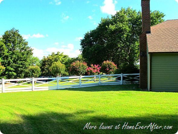 Backyard Mulch Jump :  yardjumpstartwithscottsfloridaselectmulch #HomeEverAfter #