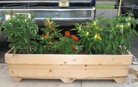 Pin by kathy alling on garden planter boxes pinterest for Portable vegetable garden