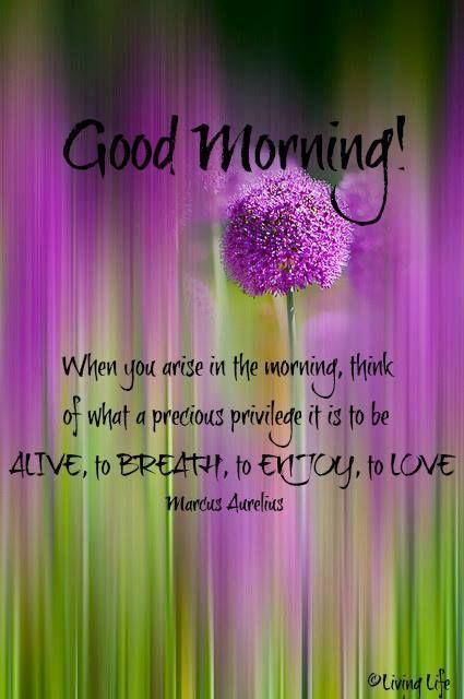 Good Morning Everyone Poem : Good morning quotes pinterest quotesgram