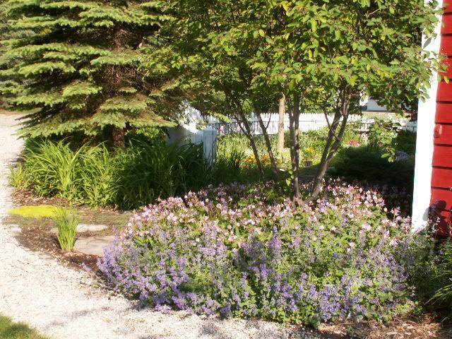 Perennial garden landscape ideas pinterest for Garden designs pinterest