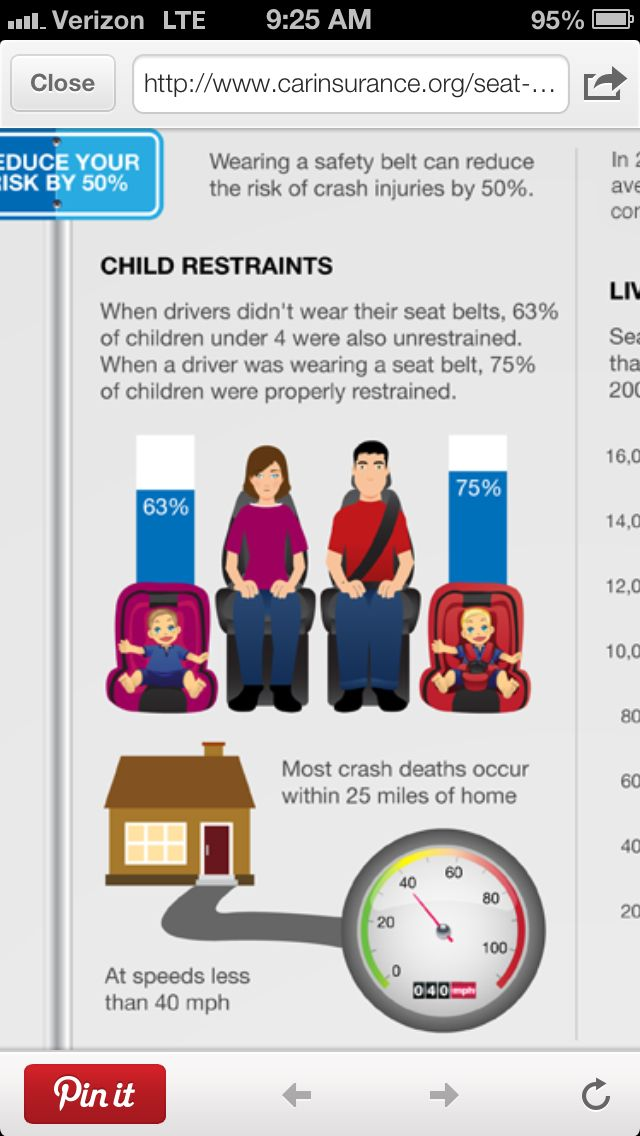 seat belts save lives essay