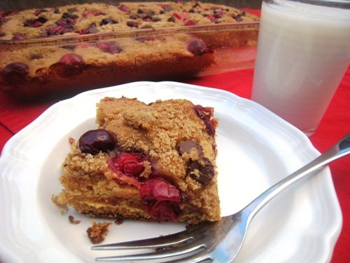 Cranberry Chocolate Snack Cake >> intriguing! good way to use the ...