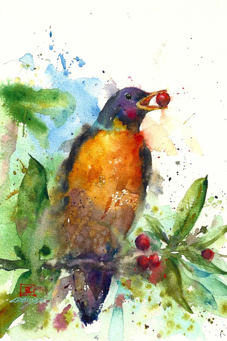 Bird pictures to paint Bird house plans, free simple to build projects