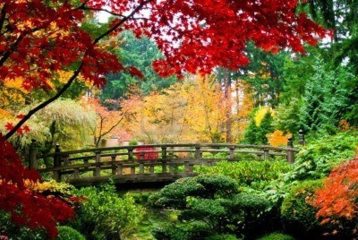 Fall gardens bing images gardening greats pinterest - Gardening in fall ...