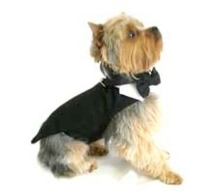 Need a ring bearer?