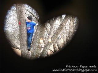 Great photo idea, using a papertowel roll!