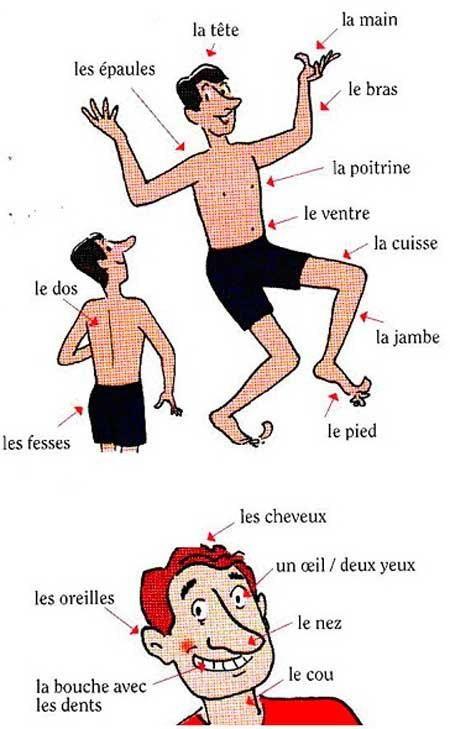 Иллюстрации к английские упражнения в картинках