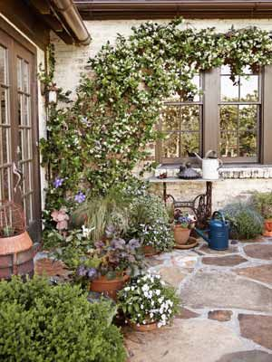 Love the stonework and the trailing vine.