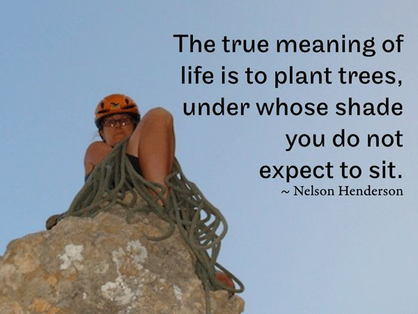 Plant Trees Under Whose Shade Quote : The true meaning of life is to plant trees under whose shade