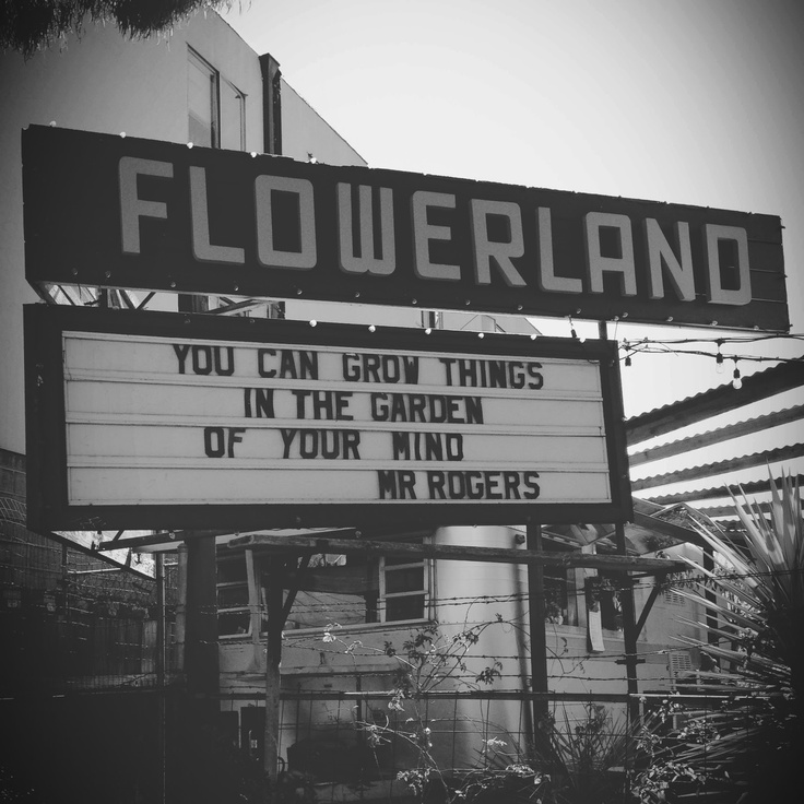 You Can Grow Things In The Garden Of Your Mind Mr Rogers Inspired By Pinterest