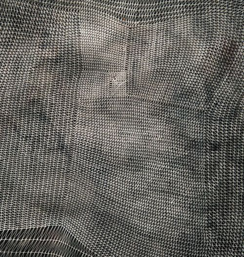 "Sam Messenger. ""Six veils"". One of ""a set of ink-on-paper pieces that accomplish rich monochromatic textures through razor-thin intersecting lines."" Cool Hunting, Culture, CH Editors, 7 December 2011"