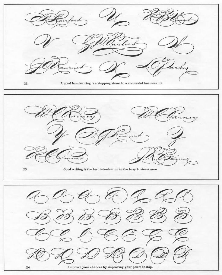Pin Ornamental Penmanship Writing Sample Pictures On Pinterest