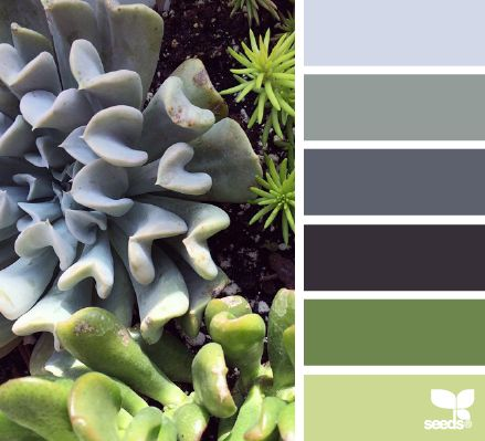 Nature Hues - http://design-seeds.com/index.php/home/entry/nature-hues29