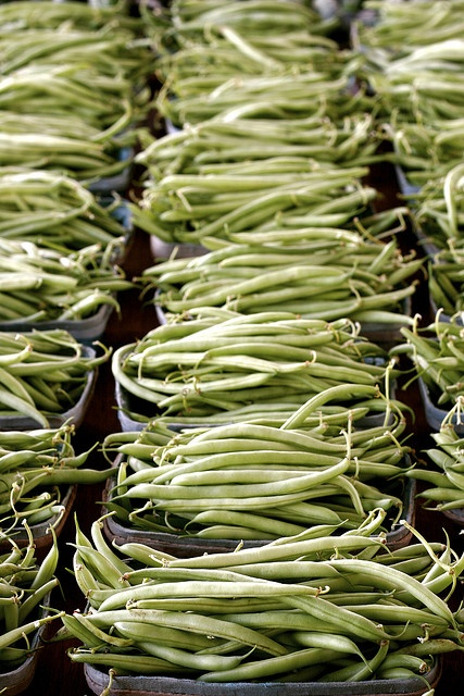Green Beans never looked better...