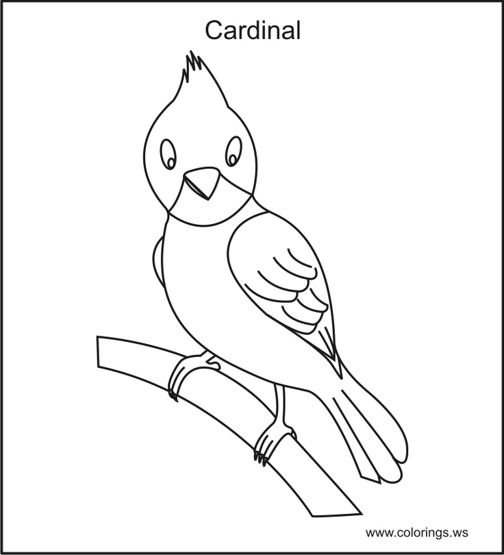 cardinals coloring pages to print - photo#34