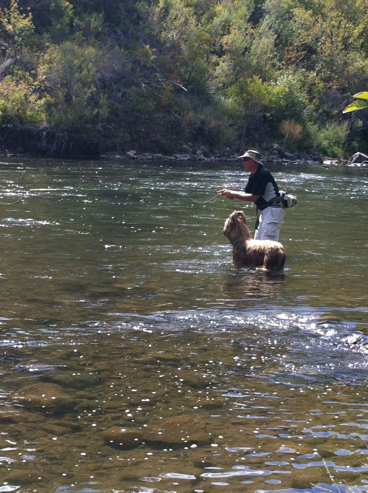 fly fishing the truckee river fishing images pinterest