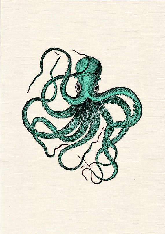 Vintage octopus logo