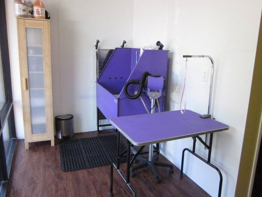 Dog grooming area dogs pinterest for Dog grooming salons near me