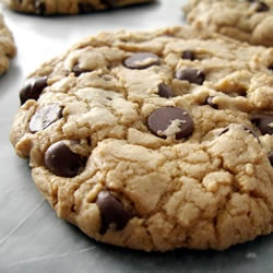 Best Big, Fat, Chewy Chocolate Chip Cookie Recipe - Allrecipes.com--my ...