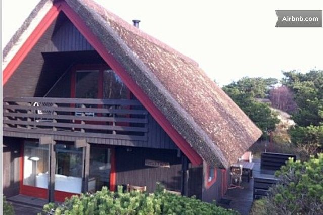 Danish Thatched Roof Summer House