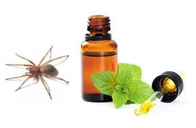 Spiders hate peppermint! Put some peppermint oil in a squirt bottle with a little water and spray your garage and all door frames. - interesting!
