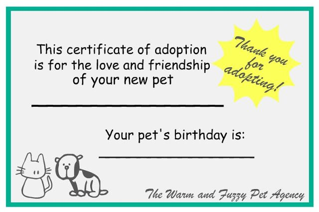 Adoption certificates   Gingham dog and calico cat party   Pinterest
